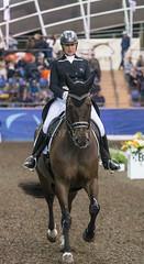 17429_Sydney_CDI_GPFS_0062.jpg (FranzVenhaus) Tags: athletes dressage australia equestrian riders horses ponies rug siec nsw sydney newsouthwales aus