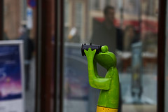 Curious frog ((( n a t y ))) Tags: curious frog funny street shop zutphen netherlands frtress city urban outdoor lonelyplanet destinations wanderlust weekend travel tourism sightseen people reflection decoration canon eos6d holiday historic old gelderland