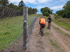 Boder Fence (Neil Ennis) Tags: bicentennialnationaltrail border borderfance cycling killarneybarlowsgateroad mtb rabbitprooffence bnt