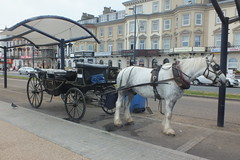 Landau on seafront (Moldovia) Tags: uk greatbritain england horse europe unitedkingdom norfolk eu gb pointandshoot greatyarmouth europeanunion pointshoot eastanglia fujifilmfinepixhs20exr