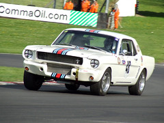 Sports Car vs Saloons - Brands Hatch - 050513 (ColeTrickle#46) Tags: fordmustang brands brandshatch cscc 2013 sportscarvssaloons
