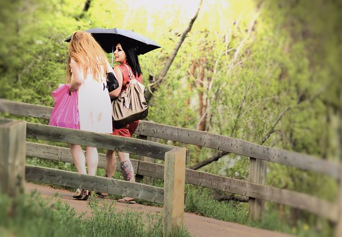 Pink Bag and Black Umbrella Fence Friday