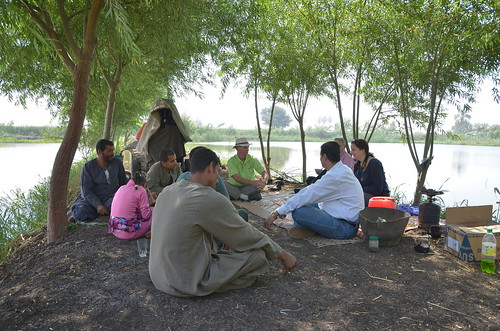 Participatory approach with tilapia producers in El Minya, Upper Egypt. Photo by Jens Peter Tang Dalsgaard, 2013.