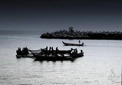 The Fishing Zone. (Shanmuga Velan) Tags: life morning india fish beach dawn boat fishing nikon flickr fishermen weekend ngc working blues chennai tamilnadu n4 cwc nikond3200 kasimedu shanmugavelan
