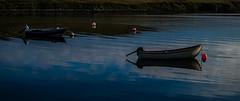 toft reflections 02 (Alf Thomas) Tags: light nature reflections landscape scotland landscapes shetland toft
