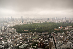From the 47th floor (koalie) Tags: city vacation panorama japan forest tokyo shinjuku day cityscape view cloudy jp yoyogipark tokyoparkhyatt 2013060727japan