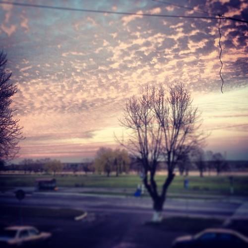 #belarus #autumn #november #mozyr #sunset