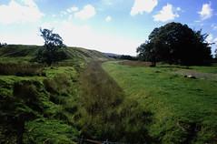 Muirkirk Canal 3