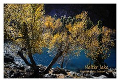 Autumn on Nalter lake Gilgit Pakistan (saleem shahid) Tags: