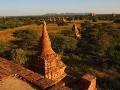 Late afternoon sun over Bagan (Myanmar 2013)