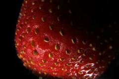 Strawberry  Seeds 2 (Chris Skrundz) Tags: lighting red detail macro up closeup fruit stem close tube tubes seed dramatic seeds extension magnify minature strwberry kenko