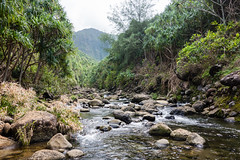 02023_RAW (Mr Inky) Tags: hawaii kauai hanakapiaibeach kalalautrail haenastatepark sonyrx100