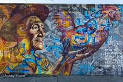 Joel artista street art (ZUCCONY) Tags: streetart nyc 2017 newyork unitedstates us bobby zucco bobbyzucco pedro pedrozucco mural murales new york ny graffiti art arte calle