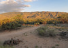 Ah the Rincon Mountains in the evening. I don't even need to show you a picture. You readily envision the scenery when I say the words. (Tim Kiser) Tags: 2015 20151003 arizona arizonalandscape img4423 micaviewtrail october october2015 pimacounty pimacountyarizona rinconmountaindistrict rinconmountaindistrictlandscape rinconmountaindistrictofsaguaronationalpark rinconmountains saguaronationalpark saguaronationalparkeast saguaronationalparklandscape saguaroparkeast tucsonmetropolitanarea deadcactus desert desertlandscape desertplants distantmountains evening eveninglandscape eveninglight landscape mostlysunny mountainlandscape mountains nationalpark nationalparklandscape orangelight park southarizona southeastarizona southeasternarizona southernarizona sundown sunset sunsetlandscape trail view