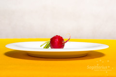 Vegetables on a white plate #6 Radish (Sagittarius_photography) Tags: eating food home plate radish red root table vegetable white