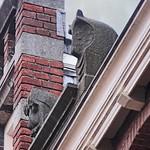 Beelden op het dak thumbnail