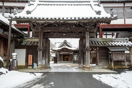竹林院1・Yoshino