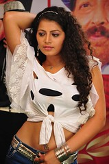 Indian Actress DISHA POOVAIAH Hot Photos Set-1 (21)