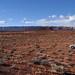 Bluff+-+Utah+Desert
