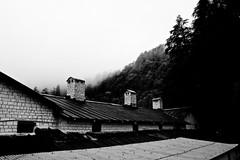 wpid-chakraata-33 (harshchiki) Tags: mountains india hills winter blackandwhite bw