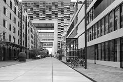 Kranhäuser (KPPG) Tags: bwandsepia 7dwf köln cologne nrw germany deutschland architektur architecture sw