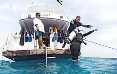 1204 33a (KnyazevDA) Tags: disabled diver disability diving owd underwater undersea padi redsea buddy handicapped paraplegia paraplegic