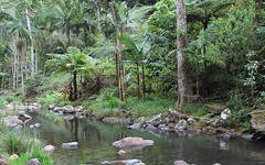 171 Upper Wilsons Creek Road, Wilsons Creek NSW