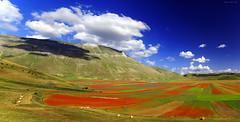 Tiempos felice (Gio_guarda_le_Stelle) Tags: castelluccio landscape garyburton patmetheny