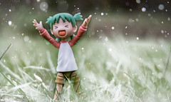 79/365 (Iggy Summers) Tags: toyphotography yotsuba cold spring 50mmafs