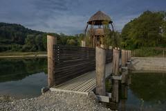 Naturschutzgebiet (W***) Tags: aussichtsturm brücke natur teich turm zurzach rietheim aargau schweiz ch