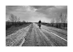 On the road (Jan Dobrovsky) Tags: leicaq bicycle landscape outdoor rural countryside loneliness leica ukraine grain contrast blackandwhite volyn monochrome village countrylife document drama