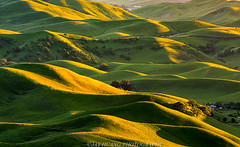 Light and Shadow (Jaykhuang) Tags: springtime rollinghills eastbay pleasanton livermore dublin trivalley bayarea sunset springgreen jayhuangphotography