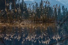Turned upside down (*Capture the Moment* (OFF till End June)) Tags: 2017 barmsee bavaria bayern berge clouds deutschland elemente germany himmel lake lakebarmsee landschaften mountains reflection reflections reflexion see sigma1181835mmart sky sonya77 sonyalpha77 spiegelung wasser water wetter wolken cloudy wolkig