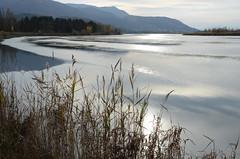 Lac de Curbans (RarOiseau) Tags: alpesdehauteprovence curbans lac lumière saariysqualitypictures naturebynikon