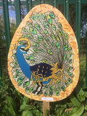 """""""Easter Egg"""" trail on Ulverston Canal. This example shows a peacock. (Bennydorm) Tags: iphone5s artistic beautiful lovely fence green greenery artwork pretty easter april europe uk gb britain cumbria furness ulverston trail towpath colours bird peacock streetart art painting easteregg egg shapes oval"""