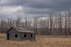 All Alone (Len Langevin) Tags: abandoned old building farm derelict weatheredwood weathered forgotten alberta canada nikon d300 nikkor 18300