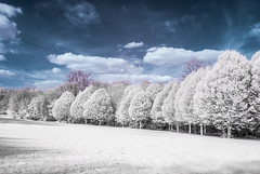 Beckenham Place Park (blackwoodse6) Tags: infrared ir 720nm trees sky clouds london bromley beckenhamplacepark londonparks southlondon southeastlondon bluesky nikon nikond40x londonboroughofbromley outdoors
