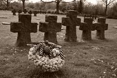Remember (Corinne Lejeune Girot) Tags: beach war normandy cimetière liberté freedom memory memoir souvenir remember plagedébarquement hoc grandcampmaisy lacambe collevillesurmer tombe tomb guerre3945 inmemory donotforget
