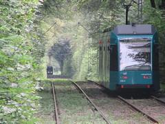 Nah und fern (VerkehrsFotos) Tags: 2016 verkehr frankfurt strasenbahn