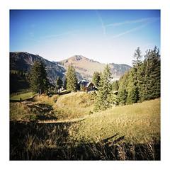 Klewenalp, October 2016 (dreifachzucker) Tags: istillshootfilm filmisnotdead believeinfilm 120 mediumformat lomographylca120 lomo lca120 film c41 fujicolorpro400h analog analogue klewenalp schweiz suisse switzerland october20th2016 october 2016 autaut