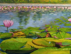 The Lillies 12x16 oil #impressionistic#oil#pond#lillie pads (benjaminkelley1) Tags: lillie oil impressionistic pond