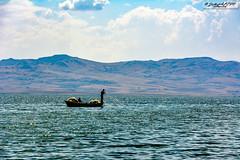 Teknede Balıkçılık (zulkifaltin) Tags: baraj sahil su akarsu hirfanlı kırşehir balık kızılırmak göl doğa landscape water outdoor gökyüzü hayat balıkçılık olta ağ hobi tekne balıkçı