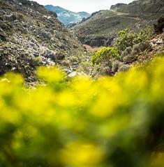 323_3662 (smülli) Tags: kreta crete hellas island mittelmeer mediterranian griechenland