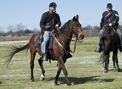 Fort Monroe Civil War encampment Virginia Hampton US cavalry union horses (watts_photos) Tags: fort monroe civil war encampment virginia hampton us cavalry union horses