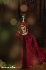 Crônica 53 (Osmundo Gois) Tags: donatella von roth azalea impldoll sd bjd dress red tony head medieval queen
