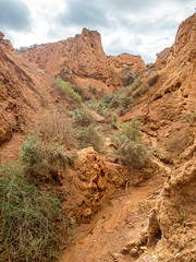 COP burra district field trip - red banks cp - apr 2017 - 4220900 (COPbiodiversity) Tags: pglc activities activity adelaidemetropolitan arid australia australian autumnfieldtrip badlands baldinacreek billdoyle burra canyon care cityofplayford community communitygroup cop council erosiongully fieldtrip greening group gulch gully gullying hike hiking land landcare mallee midnorth mountloftyranges north northern playford playfordgreening playfordgreeningandlandcare pool ravine redbanks redbanksconservationpark redbankscp reserve sa semiarid shrubland southaustralia southaustralian trail volunteer volunteering walker walkingtrail