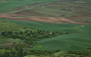 ... spring fields ... [Try L]