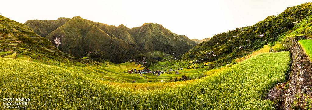 フィリピン・コルディリェーラの棚田群の画像 p1_38
