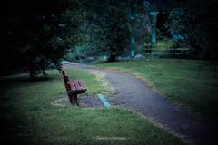 Solitude (geirkristiansen.net.) Tags: norway bench solitude alone bokeh path lonely drammen buskerud elveparken planar8514zf nikond800 carlzeiss85mm14zf2