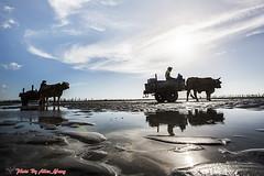 20130623__5D3_2034 ( ( Allen Yang )) Tags: canon landscapes taiwan      blueskywhiteclouds  allenyang  allenabcmsahinetnet